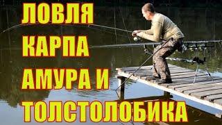 Рыбалка в локне белгородская область