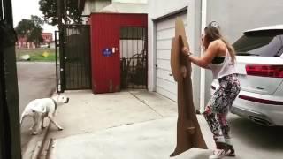 Ронда Роузи пугает собой собаку