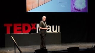 Gary Greenberg The beautiful nano details of our world