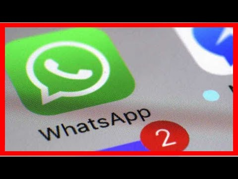 Berita Terkini | WhatsApp Ujicoba Notifikasi Mention di Group Chat – Selular.ID
