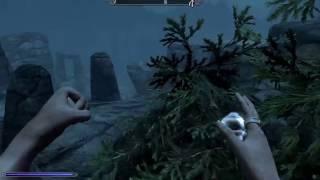 PS4 Elder Scrolls V Skyrim Special Edition - Imperial Wolf Race Mod Gameplay