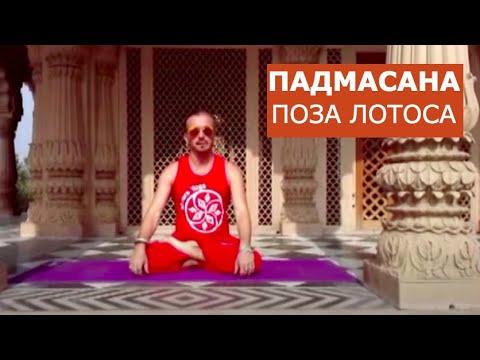 Анатолий Зенченко. Ишвара йога. Техника входа в падмасану