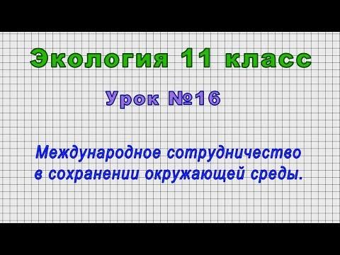 Экология 11 класс (Урок№16 - Международное сотрудничество в сохранении окружающей среды.)