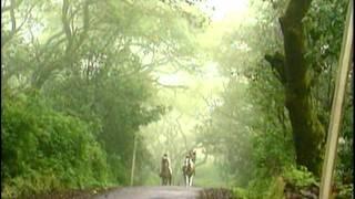 Tumne Rakh To Li Tasweer Hamari (Full Song) Film - Phir