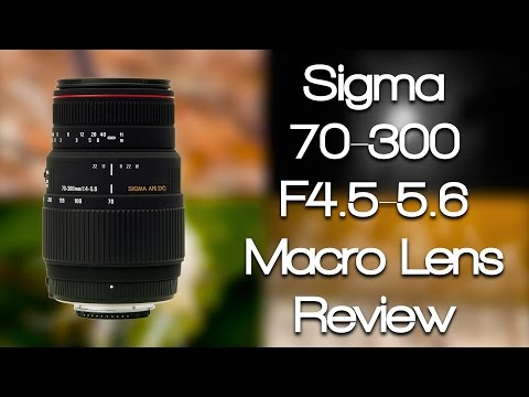 Sigma 70-300mm f4-5.6 Macro Lens Review (Canon Mount)