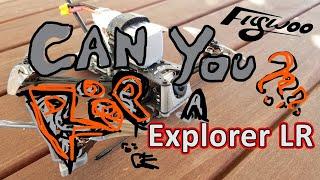 Flywoo Explorer LR HD FPV Drone Freestyle DJI Tree Surfing like a boss!