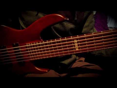 InVase - Phantom Folklore Bass Playthrough LTD D-6