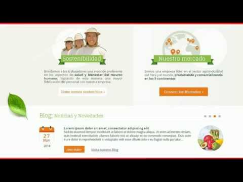 DanPer - Diseño de página web por Staff Creativa
