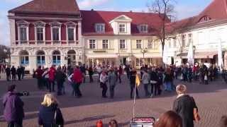 preview picture of video 'Rueda Flashmob Potsdam April 2015'