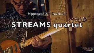 Hippocampus - Nguyên Lê Streams quartet