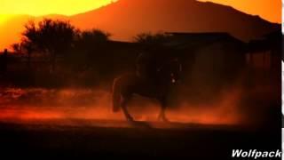 RENATO PEREZ VIVA CHILE Video
