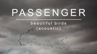 Passenger | Beautiful Birds (Acoustic) (Official Album Audio)