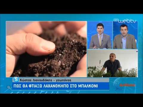 Πώς θα φτιάξω λαχανόκηπο στο μπαλκόνι | 28/04/2020 | ΕΡΤ