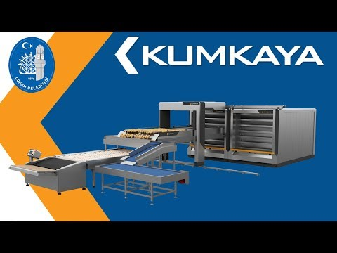 KUMKAYA ÇORUM MUNICIPALITY BREAD FACTORY (Semi Automatic)