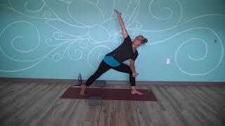 Protected: August 11, 2021 – Monique Idzenga – Hatha Yoga (Level I)