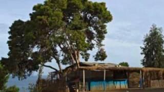 preview picture of video 'Côte Turquoise - Couleurs d'Algérie - ساحل الفيروز - ألوان الجزائر'