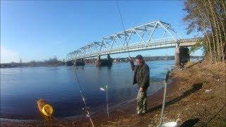 Рыбалка на реке луга в кингисеппе
