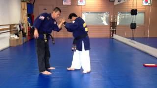 Hapkido One Hand Wrist Grab Defense 19