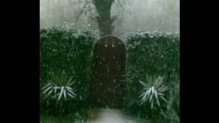 preview picture of video 'Neve Lago Bracciano - Manziana - Canale - Anguillara Snow 2010.wmv'