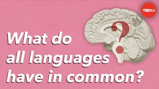 What Do All Languages Have In Common? - Cameron Morin