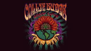 Collie Buddz   Show Love