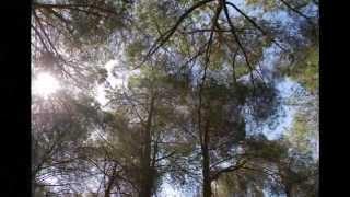 preview picture of video 'Parco Baddimanna Sassari'