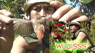 Mikat Burung Cabe/Kemade Di Sawah Pakai Mp3