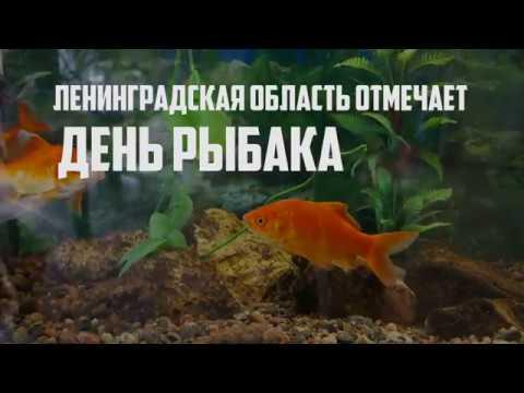 В Ропше отметили День рыбака