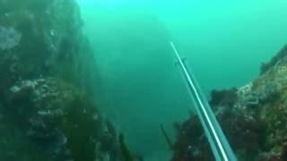 Pesca en Ortegal con Antonio P. Lagoa. Escape lubina.