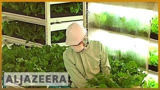 Earthrise - Japan's Future Farms