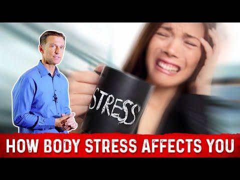 Laccent des exercices sur les muscles