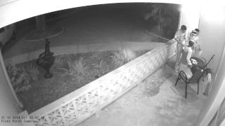 """3MP IP Security Camera """"Night time Recording"""" Video Example"""