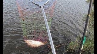 На жарёху наловил! Рыбалка на поплавочную удочку.