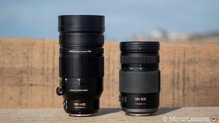 In-Depth Panasonic 100-400mm vs 100-300mm Comparison