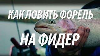Озерная рыбалка в швеции
