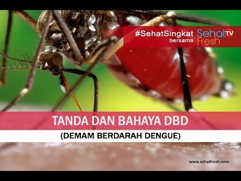 Video Gejala Dan Tanda Bahaya DBD (Demam Berdarah Dengue)