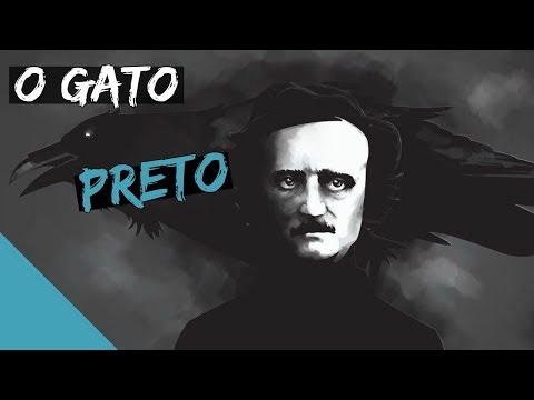 O GATO PRETO (Edgar Allan Poe) | Livros 36