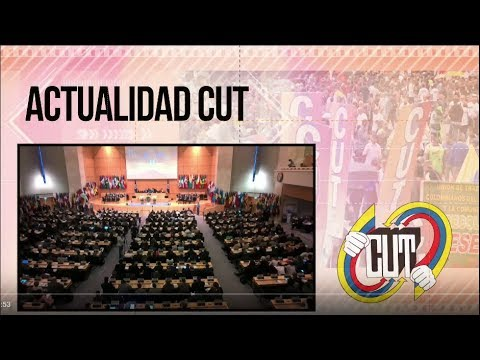 Actualidad CUT #47