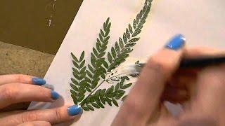 Смотреть онлайн Как научится рисовать техникой оттиском растений