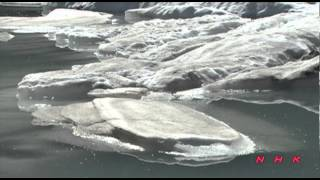 Waterton Lakes National Park of Canada, Glacier National Park