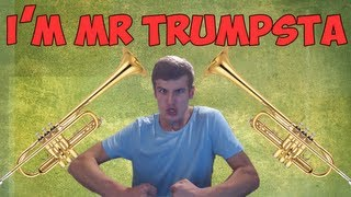 I'm a Trumpsta Motherfucker! - Are You ?? [Take 2]
