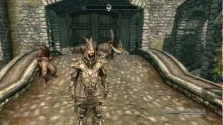 TES 5: Skyrim - Супер мега Баг