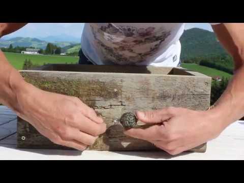 Pflanzgefäß aus Holz selber bauen