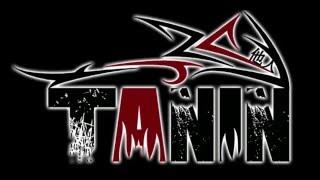 Banda TANIN - Rádio Pirata - RPM (Cover)