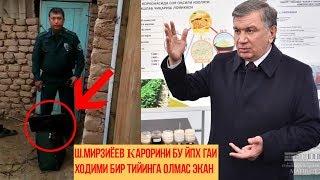 Шок! Ш.Мирзиёев Карорини Бу ЙПХ ГАИ Ходими Бир Тийинга Олмас Экан