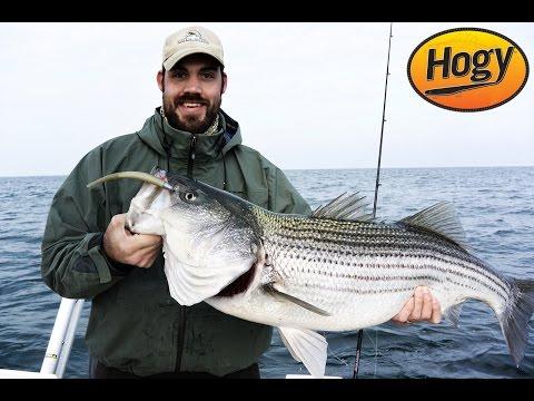 Winter Chesapeake Bay Striped Bass Fishing