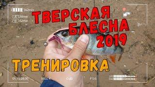 Фион рыбалка в твери