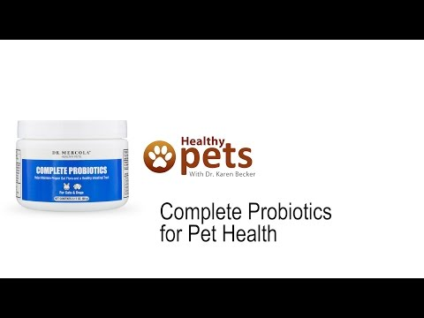 Dr. Mercola Complete Probiotics for Cats & Dogs (3.17 oz) Video