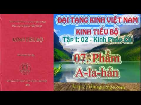 Kinh Tiểu Bộ - 018. Kinh Pháp Cú - 07. Phẩm A-la-hán