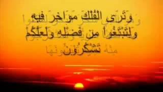 آيات من سورةالنحل ...خالد الجليل